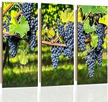 Feeby Frames, Wandbild - 3 Teile - Deco Bild, gedrucktes Bild, Deco Panel, Foto, Typ C, 90x80 cm, TRAUBEN, BAUM, GARTEN, STRÄUCHER, LILA, GRÜN