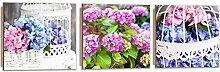 Feeby Frames, Wandbild - 3 Teile - Panoramabild, Deco Bild, gedrucktes Bild, Deco Panel, Foto, 150x50 cm, STRAUß, BLUMEN, GARTEN, BLAU, ROSA