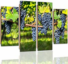 Feeby Frames, Wandbild - 4 Teile - Deco Bild, gedrucktes Bild, Deco Panel, Bild, Typ B, 80x60 cm, TRAUBEN, BAUM, GARTEN, STRÄUCHER, LILA, GRÜN