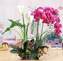 HA@GAO, Zuhause Hochzeit Garten Dekoration,Lieferinhalt:Enthält eine Flasche-50x45cm