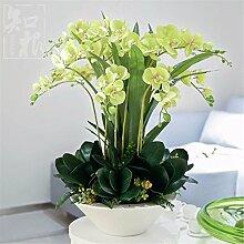 Hochzeit Dekoration DIY Home Garten Künstliche Blumen?Emulation Blumenvase Phalaenopsis Brautstrauß Set, grün