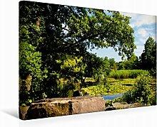 Leinwand Botanischer Garten 45x30cm, Special-Edition Wandbild, Bild auf Keilrahmen, Fertigbild auf hochwertigem Textil, Leinwanddruck, kein Poster