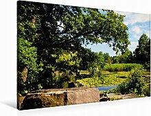 Leinwand Botanischer Garten 90x60cm, Special-Edition Wandbild, Bild auf Keilrahmen, Fertigbild auf hochwertigem Textil, Leinwanddruck, kein Poster