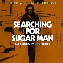 Searching for Sugar Man 14x14 inch / 35x35 cm Plastic Poster Kunststoff Plakat Wasserdicht | Anti-Fade | Kann auf den Außenbereich/Garten/Badezimmer 6TJ-2718/5887