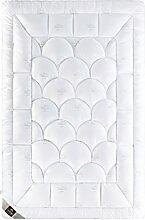 Sei Design® Mikrofaser LUXUS Bettdecke 135x200 SWAN in Premium Qualität mit daunenähnlicher Füllstruktur, leicht. Sehr leichte Decke mit hoher Wärmehaltung. Der Mikrofaser Stoff mit einem Schwanen-Motiv und eine eingearbeitete Kante verleiht der Bettdecke eine besondere Elegance.