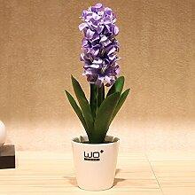 XPHOPOQ Topfpflanzen Hyazinthe Keramik Vase Wohnzimmer Garten Dekoration Violett