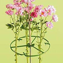 (1x) Yuzet 25,4cm Pflanze Blume Ring-Ständer Halter für Ruten Garten