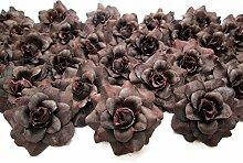 (100) Seide Braun Rosen Kopf–4,4cm–künstliche Blumen Haaraccessoires für Hochzeit Blumen Zubehör machen Haarschmuck Headbands Kleid