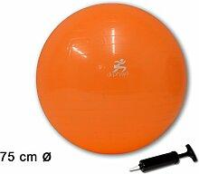 (223) Gymnastikball Sportball Fitnessball Sitzball Yogaball Bürostuhl Ball inkl Pumpe (ca. Ø 75 cm Orange)