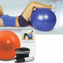 Ø 65 cm Gymnastik Ball Gym Ball Fitnessball Sitzball inkl. Luftpumpe (Blau)