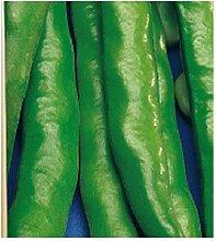 1 Kg - Samen - Bohnen-Aguadulce mit sehr langer