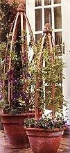 1Obelisk Säule aus Holz für arrampicatura