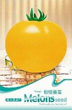 1 Original-Pack 20 Samen / Packung Süße Orange Tomaten, Tomatensamen selten saftiges Obst und Gemüsesamen