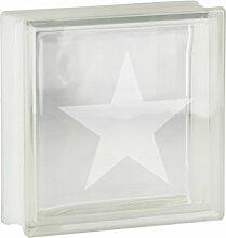 1 Stück Glasbaustein / Glasstein Vollsicht Transparent mit Motiv Seesstern 19x19x8 cm
