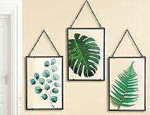 1 x Fensterbild Glas Farn/Monstera/Eukalyptus