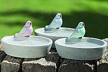 1 x Vogeltränke Minti terrakotta grau Länge 20 cm, Vogel, Trinkschalen, Gartendeko, Tiere (rosa)