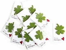 10 Gastgeschenke KLEEBLATT grün HERZ rot weiß