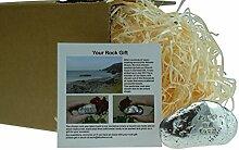 10. Jahrestag You Are My Rock Geschenkidee–massivem Metall schwere poliert Rock Geschenk für 10Jahre Jubiläum