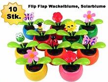10 Stück Alsino Wackelblume, Solarblume,