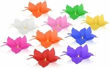 10 Stück Alsino Wasserlaternen Wasserlaterne in Form einer Lotusblüte, Schwimmlaterne, Glückslaterne, Sommerlicht, Seerosenlicht, Skylaterne, Sommerlich