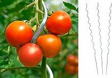 10 Stück Tomatenspiralstab 180cm Tomaten