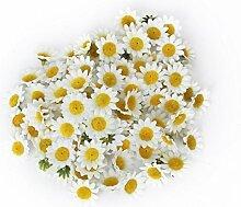 100Künstliche Blumen Großhandel von Fake Blumen Gerbera Daisy Silk Blume Köpfen Sonnenblumen Sun Flower Köpfe für Hochzeit Party Blumen Dekorationen Zuhause D ¨ ¦ cor weiß