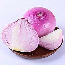 . 100 PC/Beutel Onion Erbstück Garten Zubehör