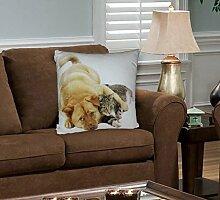 "100% Top Qualität Home Decor 3D Digital Animal Print Faux Seude Kissen 47cm x 47cm, Brown Dog & Cat, Filled Cushion Cover 18.5"" x 18.5"