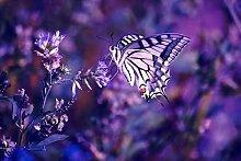 1000 Stück Jigsaw Puzzle,Schmetterling, Blumen,