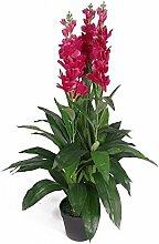 100cm Artificial Cymbidium-Orchidee Pflanze - Extra Large in Schwarz Kunststoff-Topf