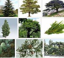 100pcs / bag, Rhododendron Samen, Azalee biji, Topf Samen, Blumensamen, die komplette Vielzahl, Bonsai-Pflanze für den Garten