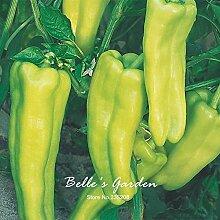 100pcs Grün Aruba Pfeffer sät Grün Horn Paprika, Chili-Schote Gemüsesamen-Hausgarten Bonsai Pflanze DIY