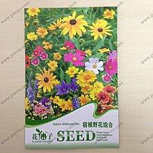 100pcs hängende Blumensamen Lobelia Samen Gartenblume Balkon Dekoration K035