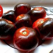 100pcs Tomate sät Chinese Gaint Tomaten-Samen 2017 HOT SALE Haus & Garten pflanzen Freies Verschiffen hohe Keimungsrate Pflanzen Burgund