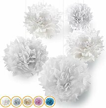 10er Premium Seidenpapier Pompons-Set |