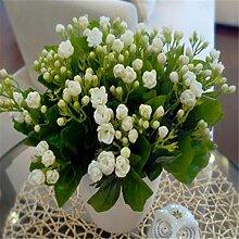 10seeds Topfblumensamen Jasmin Samen Fragrant Balkon Bonsai Pflanzen für Garten & Home Easy zu wachsen
