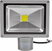 10W/20W/30W/50W/100W LED Fluter Strahler Squre Wandleuchter Flutlicht Scheinwerfer Außenstrahler Innenbeleuchtung Kaltweiß mit Bewegungsmelder (20 Watt)