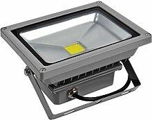 10W 20W 30W 50W 70W 100W 150W 200W 300W LED Lampe Scheinwerfer Fluter Licht Kaltweiß in silber grau Flutlicht Innen-Außenstrahler Strahler IP65 wasserdicht Flutbeleuchtung (20 Watt)