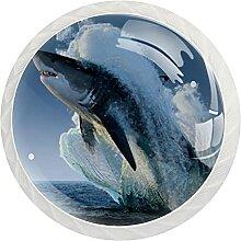 12 Stück Schrankknäufe Haifisch-Muster, rund,