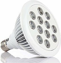 12W 24W 36W Best Grow Lampe Lights LED für House gardern Pflanze