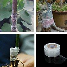 120m Garten Blumen-Gemüse Verpflanzung Tapes Zubehör Pflanzen Werkzeuge Selbstklebende Obstbaum Verpflanzen Band Nursery dehnbare