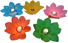 15 Stück Wasserlaterne Lotusblüte Seerose