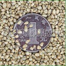 16 Typ komplett, 500 Gramm Futter, Kräuter, Futtergras Samen Bonsai Pflanze DIY Hausgarten 6