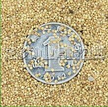 16 Typ komplett, 500 Gramm Futter, Kräuter, Futtergras Samen Bonsai Pflanze DIY Hausgarten 13