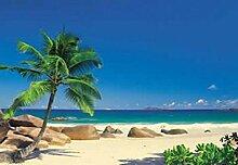 1art1 40007 Inseln - Palmenstrand, Seychellen,