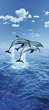 1art1 40504 Delfine - Drei Delphine Fototapete Poster-Tapete 200 x 86 cm