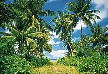 1art1 40565 Palmen - Sonneninsel, Palmen 8-teilig Fototapete Poster-Tapete 368 x 254 cm