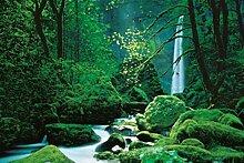 1art1 48286 Wasserfälle - Schwarzwald 4-Teilig Fototapete Poster-Tapete 270 x 194 cm