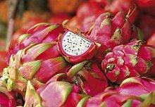 1art1 73085 Kochkunst - Drachenfrucht, 3-Teilig