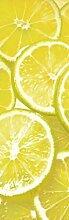 1art1 73728 Kochkunst - Zitronen Scheiben, 1-Teilig Fototapete Poster-Tapete 250 x 79 cm